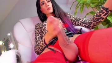 Dakotahoney ts 09-03-2021 Chaturbate trans Porn