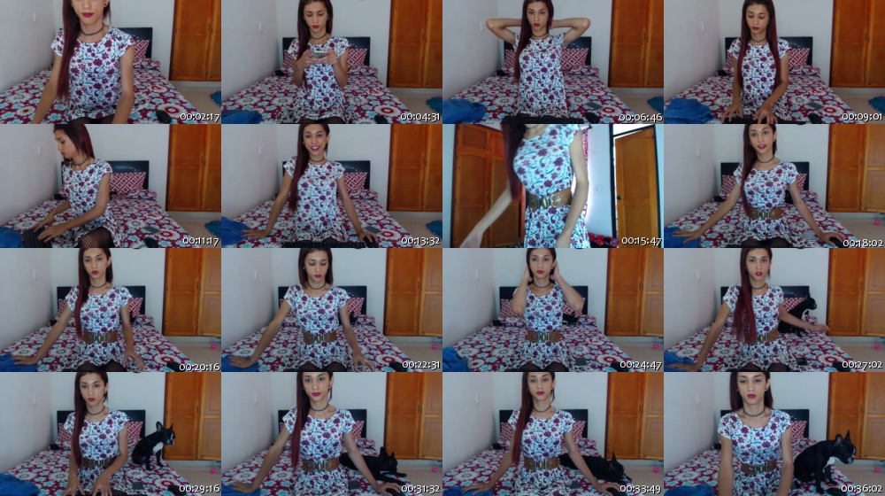 laurencesophiets ts 03-09-2016 Chaturbate