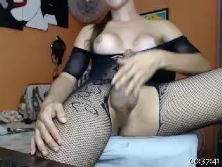 Image biggcock4foryou ts 21-09-2016 Chaturbate