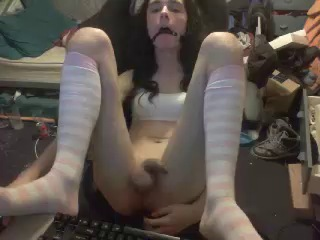 Image hannahftw ts 27-12-2016 Chaturbate