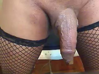 Image dream_real ts 24-03-2017 Chaturbate