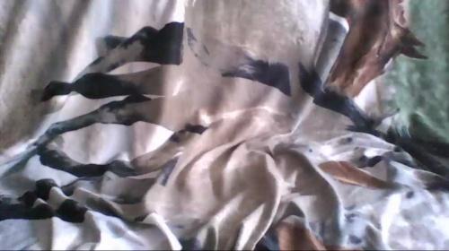 Image kirafishnet  [02-05-2017] Naked