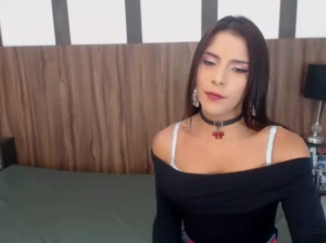 twotrannyhots Chaturbate 29-04-2018 Show