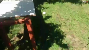 Image porkko69  [26-06-2019] Webcam