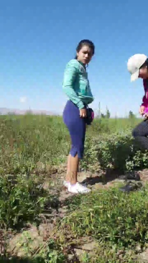 Image Gatitasoy  [22-03-2020] Webcam